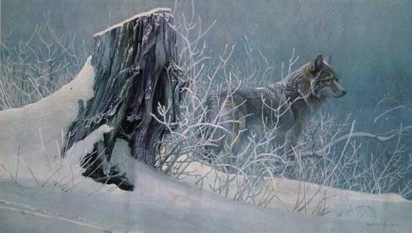 bateman-winter_tracker2